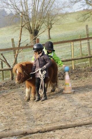 Cours de baby poney - Jeux de poney ville gratuit ...